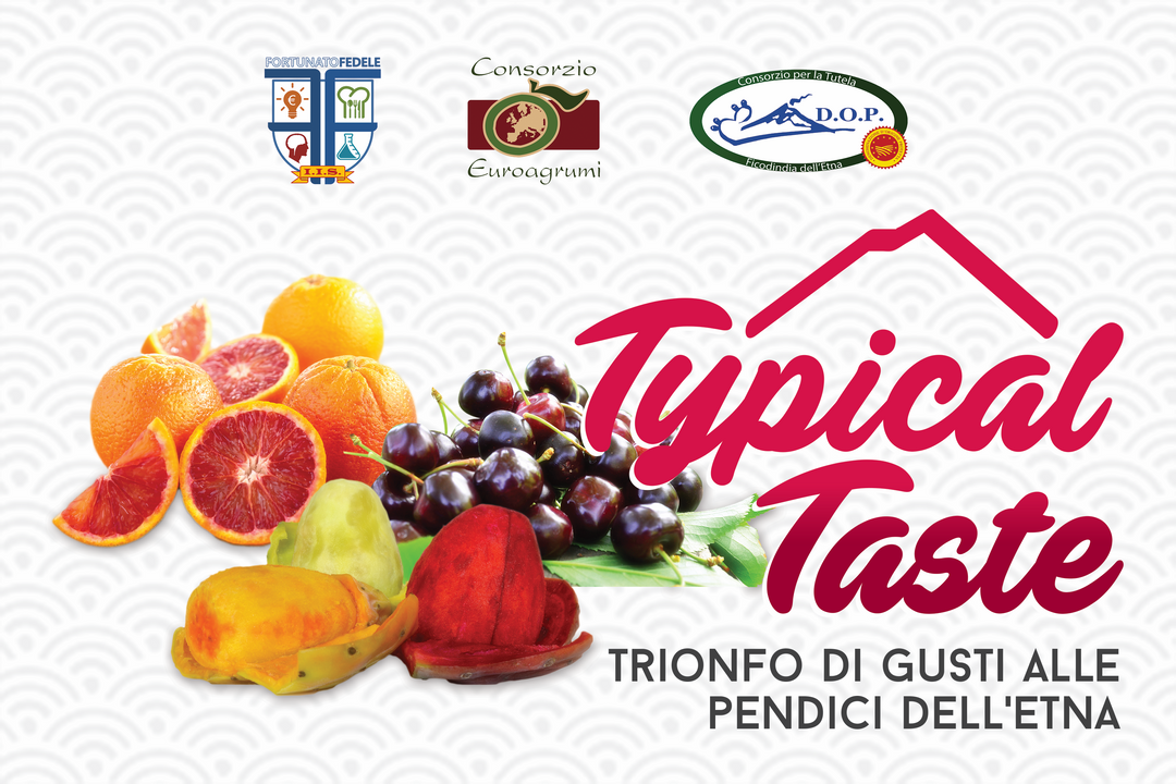 TypicalTaste 200x300 banner Copia